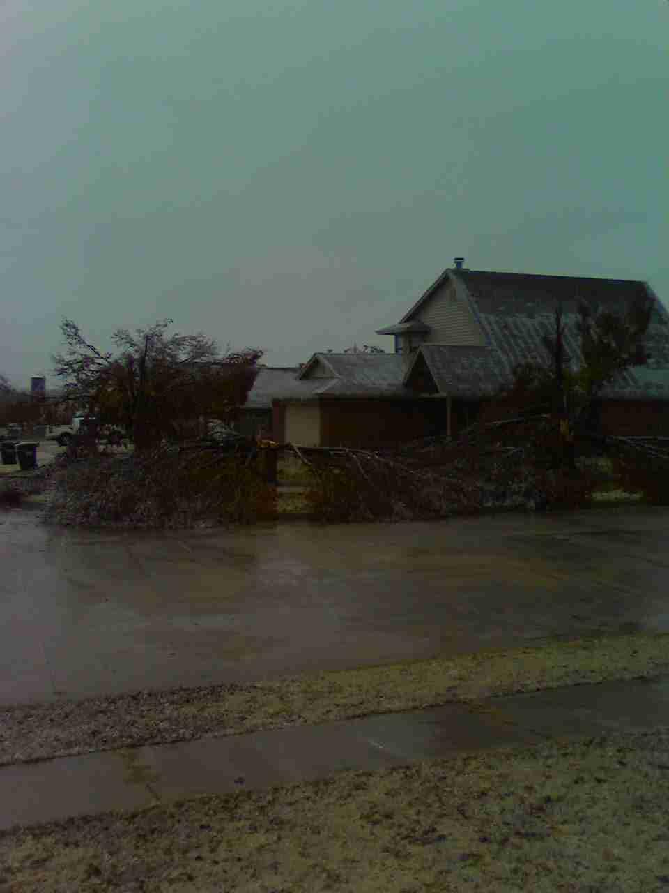 Neighbor's trees collapsed
